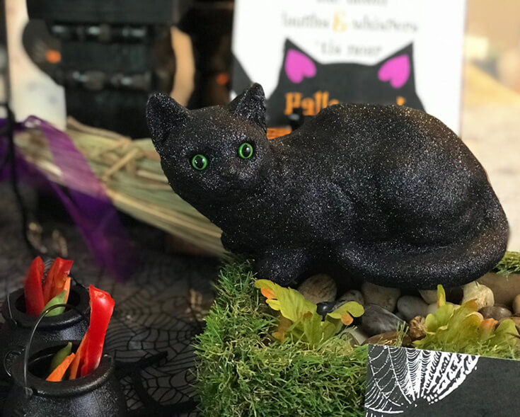 """You've got to have a black cat or two for a black cat party. This kitty with it's piercing green eyes is a perfect party accessory. """"Black Cat Halloween Party Reveal"""" on Halfpint Design - Halloween party ideas, kitty cat party, kids party, cat party treats"""