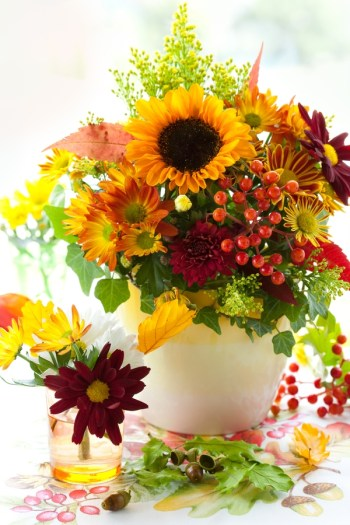 If you're looking for ideas for Thanksgiving gifts for teachers, why not a beautiful arrangement of flowers. They will love them!