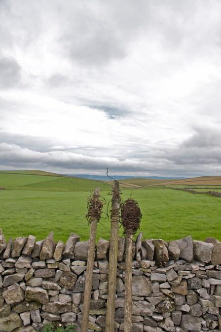 Wire fence posts  near castleton