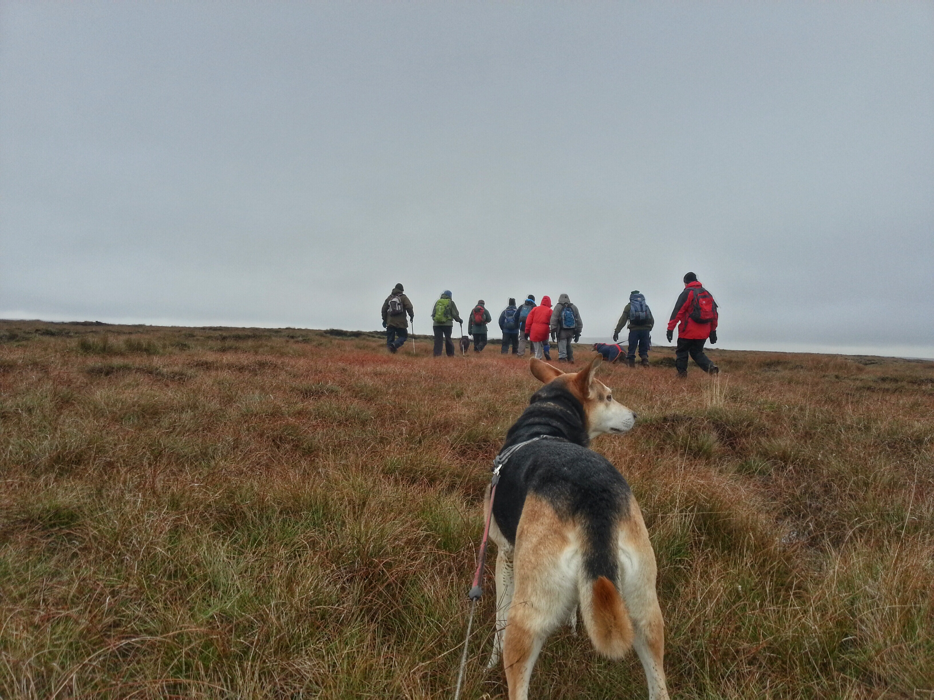 Marsden Moor hike - Marsden Adventure Outdoors - Meet The Ranger