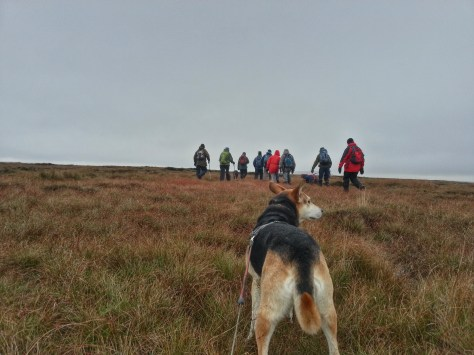 Marsden Moor hike - Meet The Ranger
