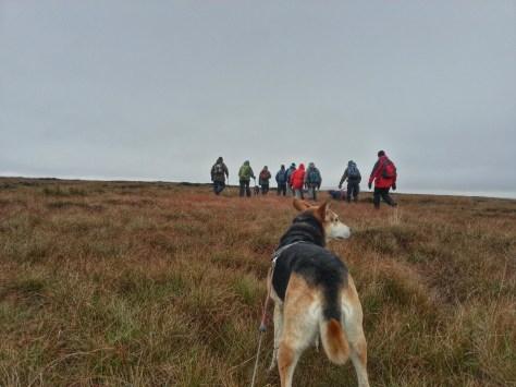 Marsden Moor hike - Meet The Ranger