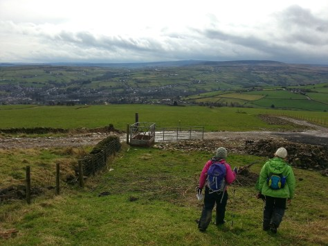 Colne Valley Circular Walk Hike