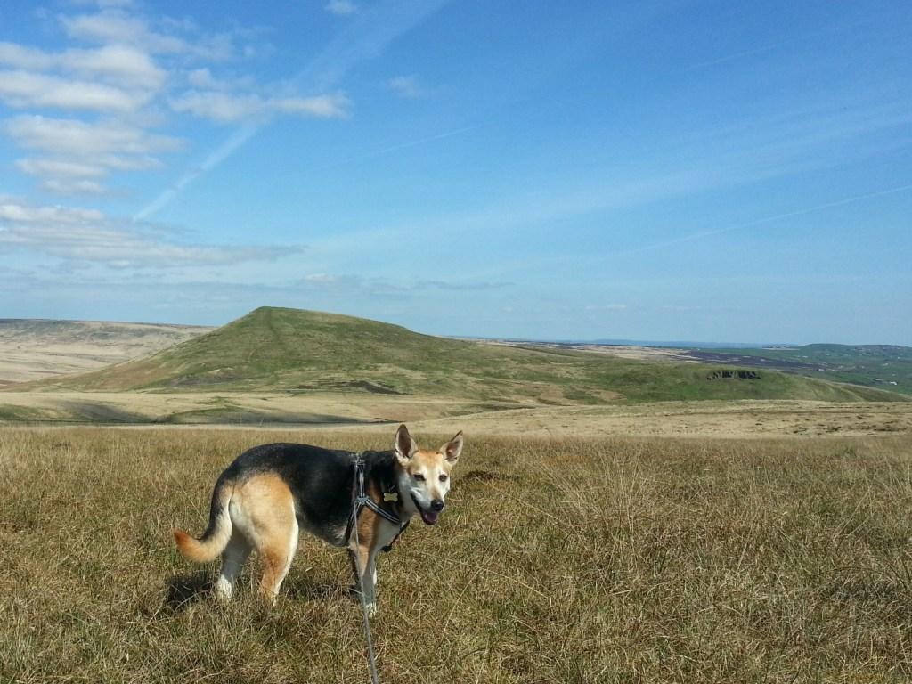 Wessenden Butterley Marsden Bobus Moors Hike