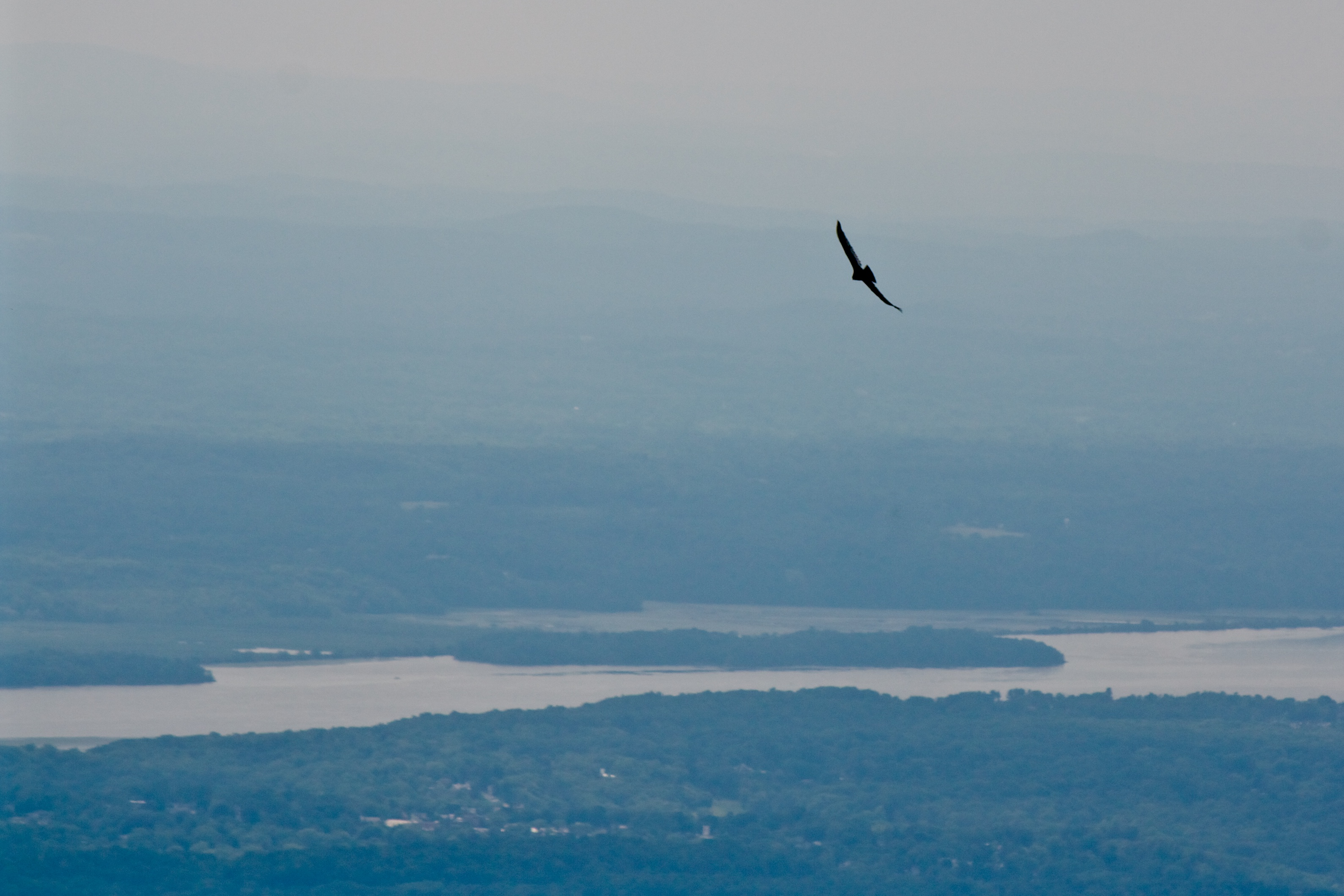 Catskills Mountains hike with soaring Raptor