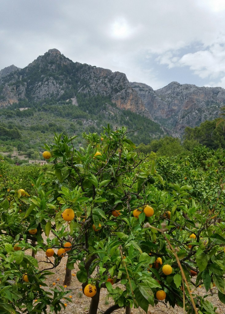 GR221 Biniaraix Soller mountains Mallorca