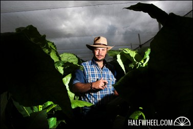 Portrait of Nestor Andrés Plasencia in one of his tobacco fields.
