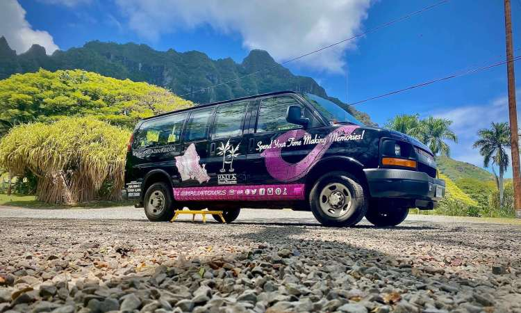 Private Tours and Safe Travels Hawaii