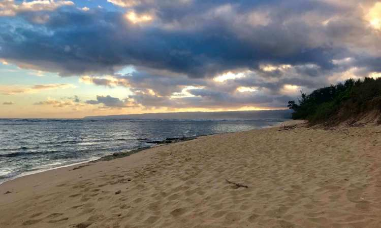 Sunrise Island Tours