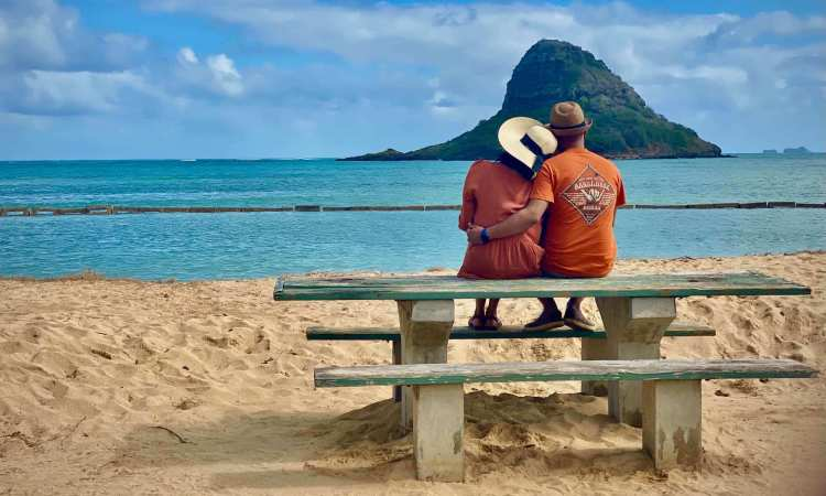 Half Day Oahu Transfer Tours