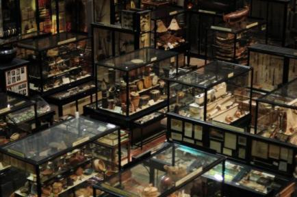 http://www.tripadvisor.com/LocationPhotoDirectLink-g186361-d215644-i55378784-Pitt_Rivers_Museum-Oxford_Oxfordshire_England.html