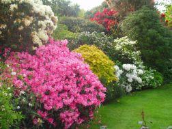 ilkbahar-manzara-resimle