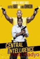 central-intelligence-