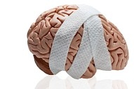 Human-Brain_Brain-Injuries_Head-Injuries_Head-Trauma_Brain-and-Head-Injury-Information_2.jpg