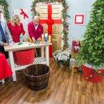 Diy Tree Collar Home Family Video