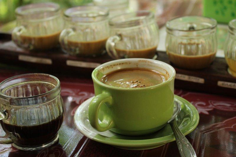 Ternyata Inilah Fakta Dibalik Manfaat Green Coffee untuk Diet!