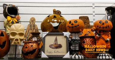 halloween-2017-at-homegoods-photo-by-halloween-daily-news_0101