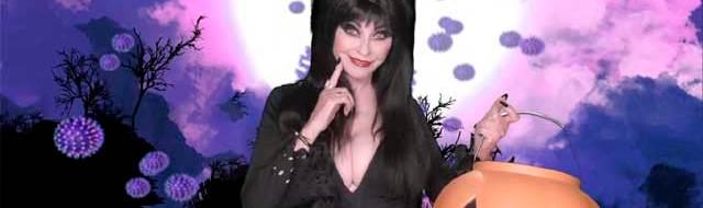 Elvira Returns for 40th Anniversary Special on Shudder