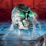 skullfogger