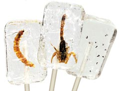 insectilix halloween lollies