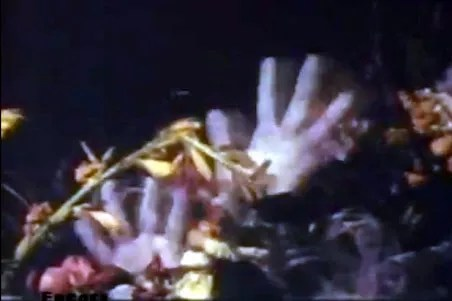 Corpse Eaters (1974) FULL MOVIE 2
