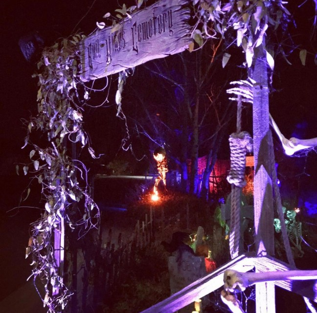 Evil Vines Cemetery Outdoor Yard Haunt Entrance Fence At Night With Noose