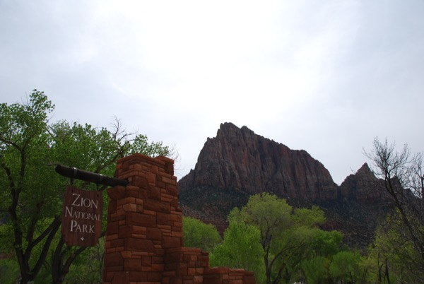 Zion National Park Photo Journal - 1