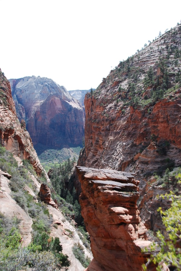 Zion National Park Photo Journal - 10
