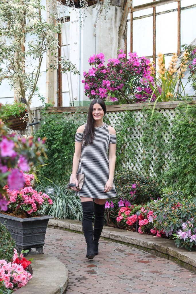cold shoulder black and white stripe mini zara dress