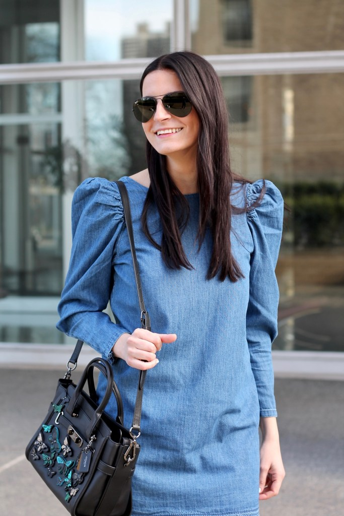 puffy chambray sleeves