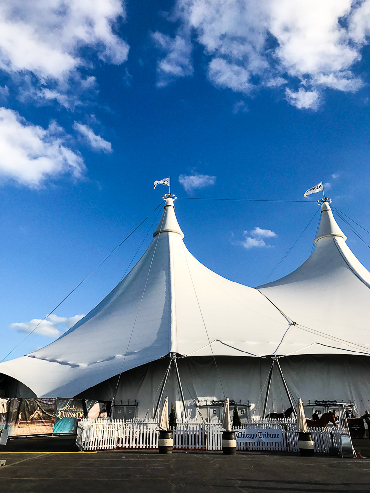Cavalia at Soldier Field