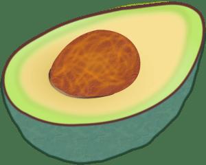 avocado-146953_640