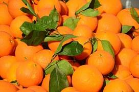 oranges-250625__180