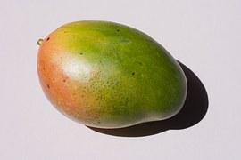 mango-559280__180