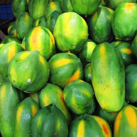 papaya-331281_960_720