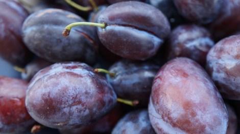plums-1644886_960_720