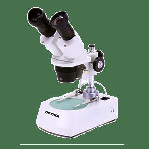 Laboratory-cat