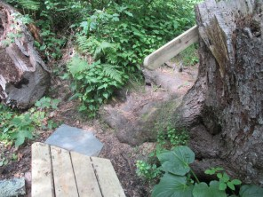 handrail at steep section of trail