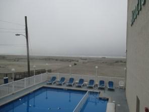 Acacia's pool