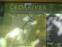 welcome to Cedariver