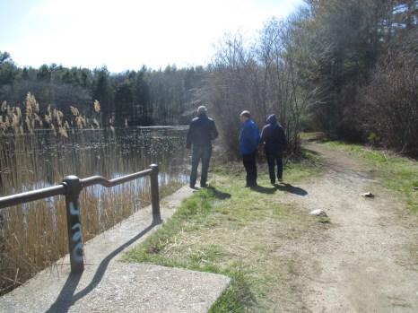 causeway between the ponds