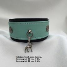 Halsband 205G met gesp