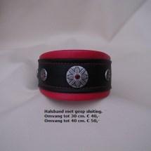 Halsband 231G met gesp