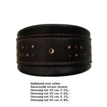 halsband swarovski stenen, strass stenen, showhalsband, tentoonstelling halsband, windhond