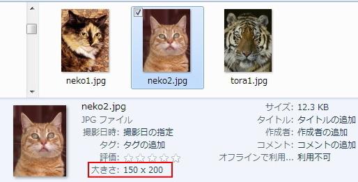 150X200のneko2