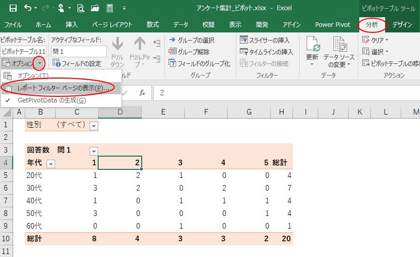 レポートフィルターページの表示