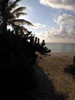 playa del carmen4