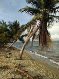 BelizeHom52