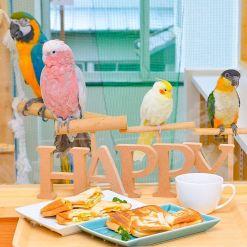 happy_001