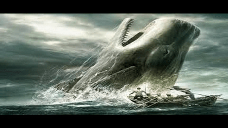 moby dick 3 essay A+ student essay analyze ishmael's reluctance to share his bed with queequeg how do their early interactions reflect the novel's major themes one of the dramatic highpoints of moby-dick, a novel that involves whirlpools, madness, and a terrifying whale, is one man's simple decision to share a room with a stranger by making this.